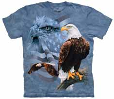 Faded Flag Eagles T-Shirt
